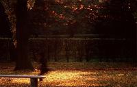 Park de Sceau 3 ソウ公園3