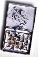 Plant of memory 1999 記憶装置 27×15.5cm
