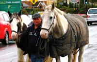 Packhorse driver who moves in rain 雨の中を移動する馬方 ⓒToshihiko Shibano