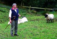 Shepherd 羊飼い  ⓒToshihiko Shibano