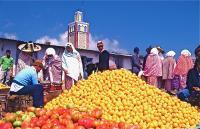 Market on Thursday 1 木曜市場(Khemis Anjra) アフリカの太陽がオレンジを輝かせていた。ⓒToshihiko Shibano