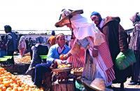 Market on Thursday 2 木曜市場(Khemis Anjra)売り子と買い手の駆け引きは万国共通だ ⓒToshihiko Shibano