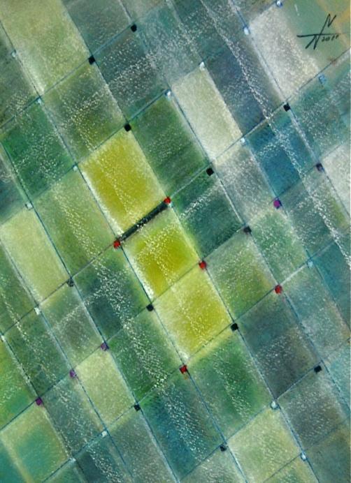 手と手をつないで   Hand in hand  2011 Pastel  Paper  33×24cm  ⓒToshihiko Shibano