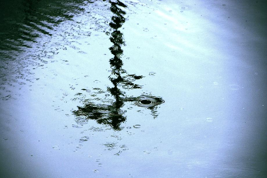 雨が描いた抽象画 Abstract painting by rain  ⓒToshihiko Shibano