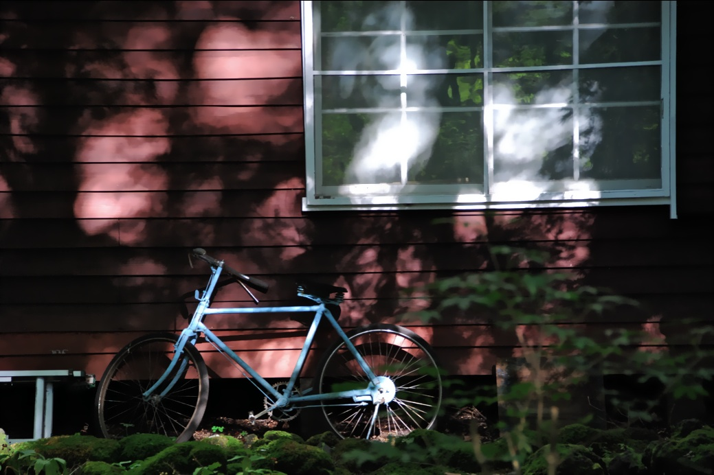 青い自転車 A blue bicycle     ⓒToshihiko Shibano