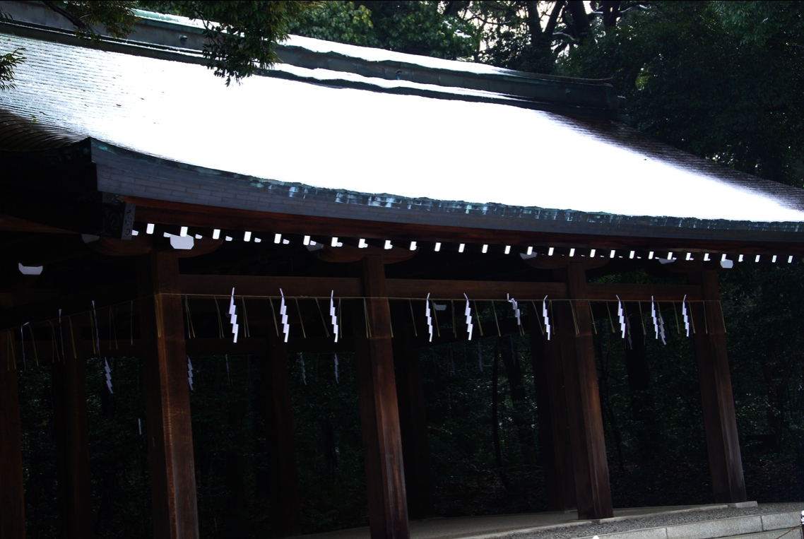 聖域 Sanctuary    ⓒToshihiko Shibano