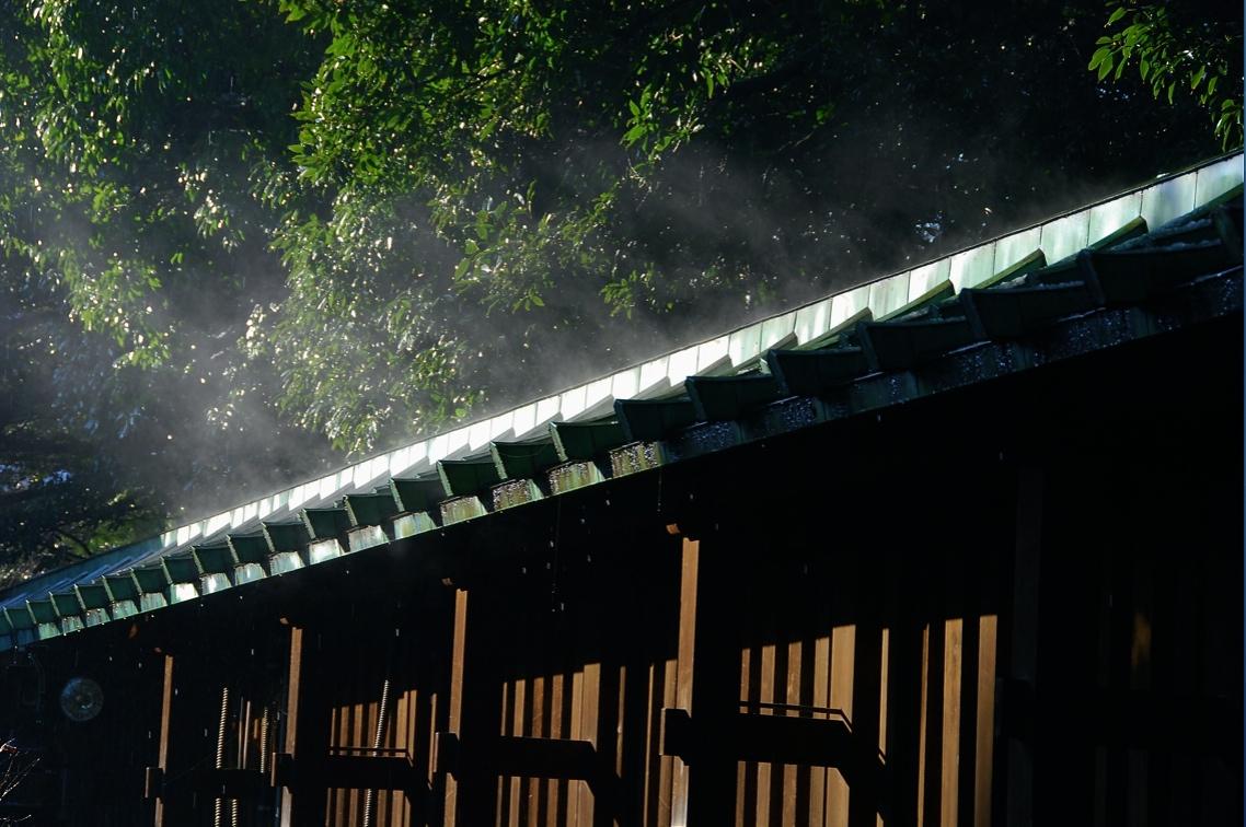 蒸気 Steam ⓒToshihiko Shibano