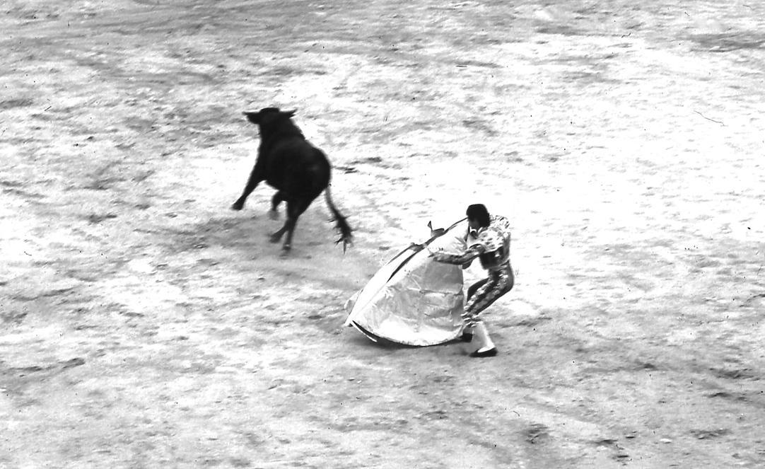 マタドール1 Matador 1 厚手の生地でできた約5㎏のカポテを自由自在に操るのが闘牛士のみせどころ  ⓒToshihiko Shibano
