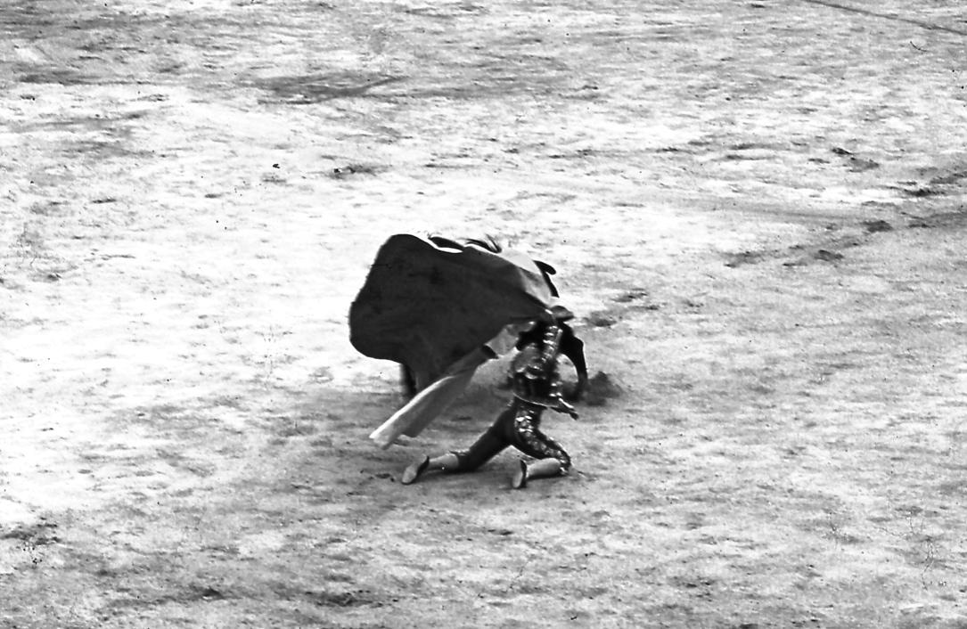 マタドール2 Matador 2  膝を地面に着いてカポテを翻すなんて、自分の勇気を観客に示す強者ってこと? 写真がぼけてるけど、この頃はまだ素人の時代なので、許して欲しい。