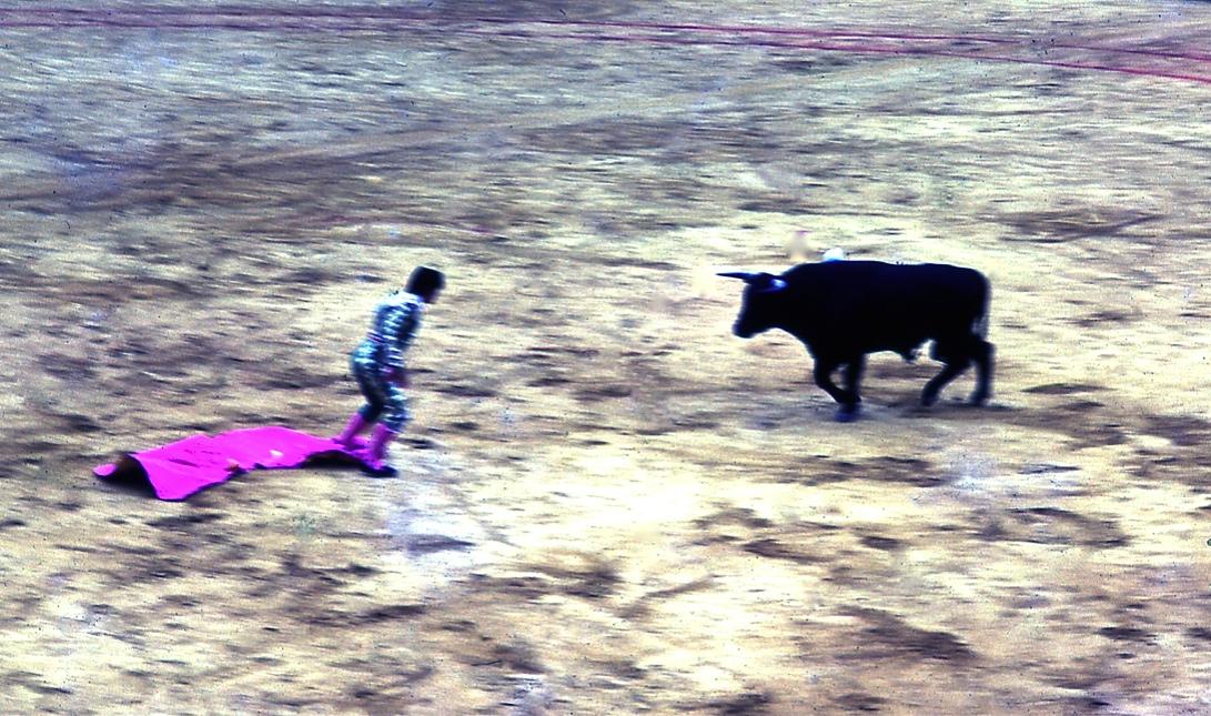 マタドール3 Matador 3   角でカポテを飛ばされ、素手のマタドールが闘牛と正面から睨みあった瞬間 。何しろ30年以上前のことなので、角に引っかけられて空中を舞ったような、そうでなかったような曖昧な記憶しかない。