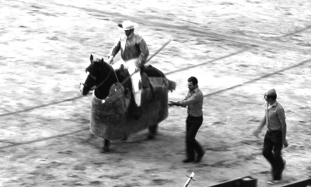 ピカドール  Picador   ピカソは絵描きにならなかったらピカドールになりたかったそうだ。ピカドールは、槍で牛を弱らせる役目。    ⓒToshihiko Shibano