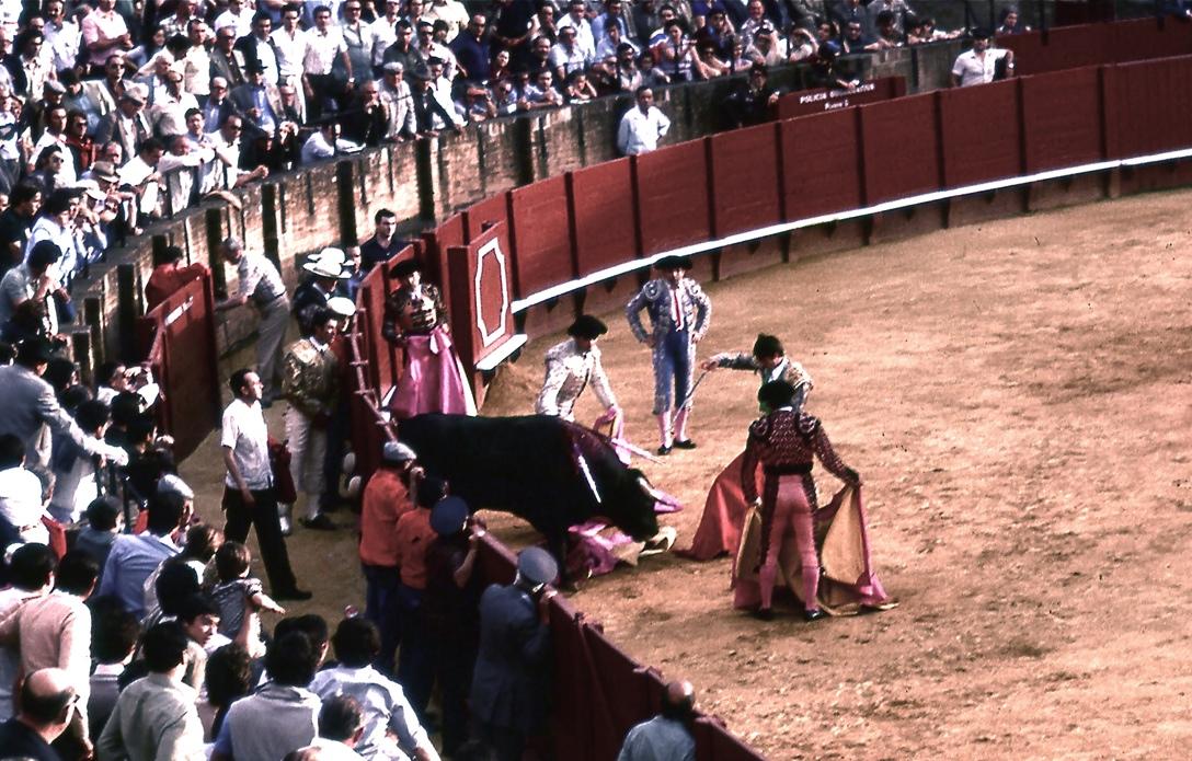マタドール5 Matador 5   雄牛の頭を低くさせて、心臓へ一突きし、苦痛を長引かせないと観客から称賛が起こる。反対に何回刺しても牛が苦しむだけの下手なマタドールに対しては激しい非難の声があがる。ⓒToshihiko Shibano