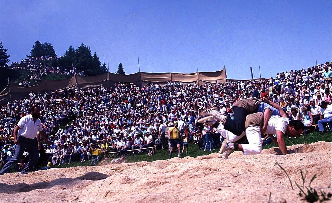 スイス相撲2 背中を地面につけたら負け。 Swiss Wrestling 2  ⓒToshihiko Shibano