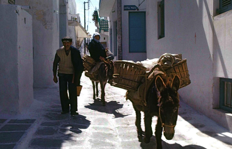 ロバは大事な移動手段。A donkey carried baggage こんな風景はもう見られないのかもしれない。Such a scenery may not be seen anymore. ⓒToshihiko Shibano
